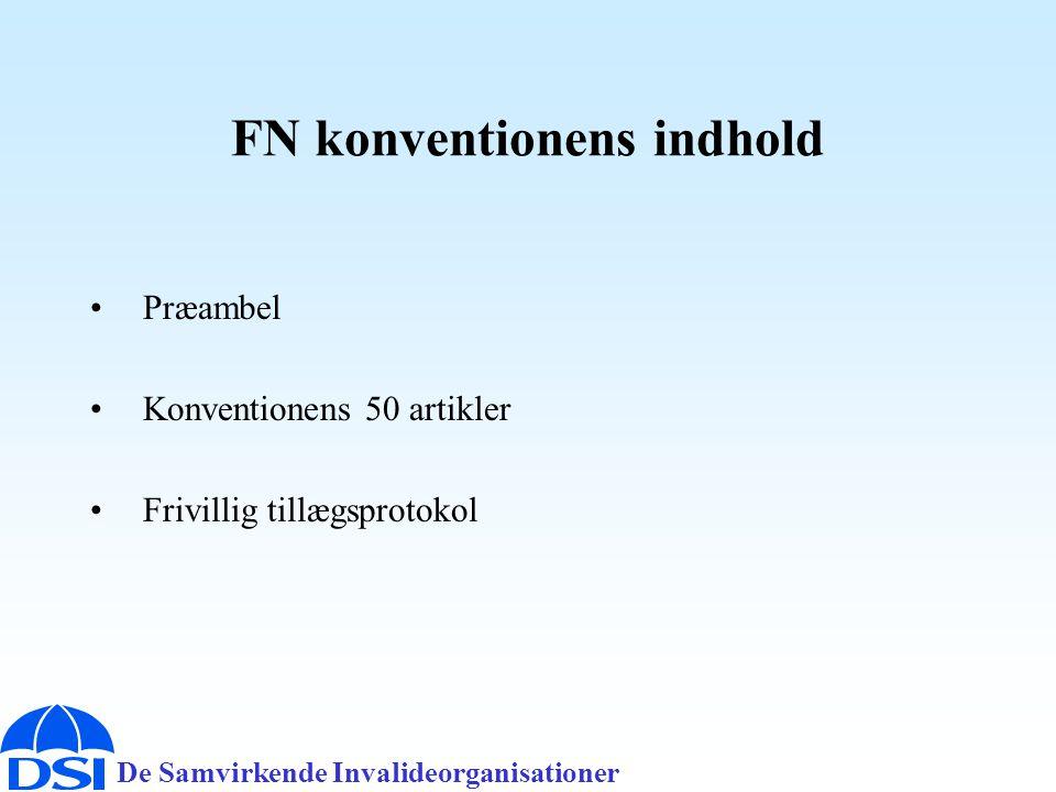 FN konventionens indhold