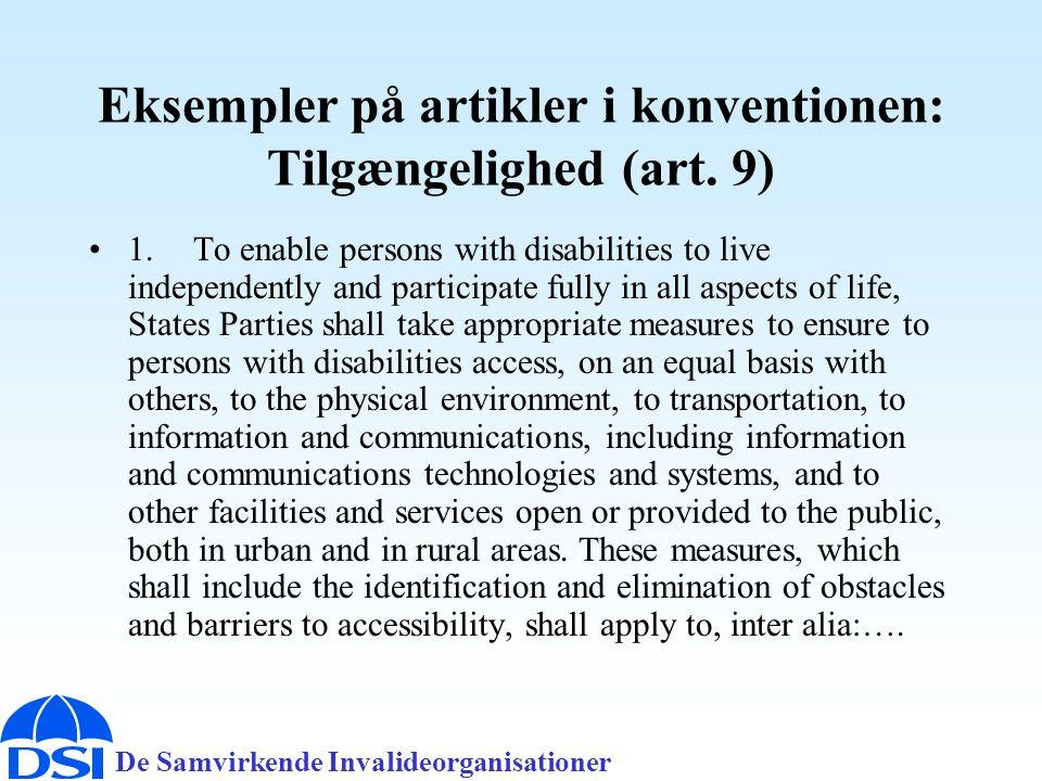Eksempler på artikler i konventionen: Tilgængelighed (art. 9)