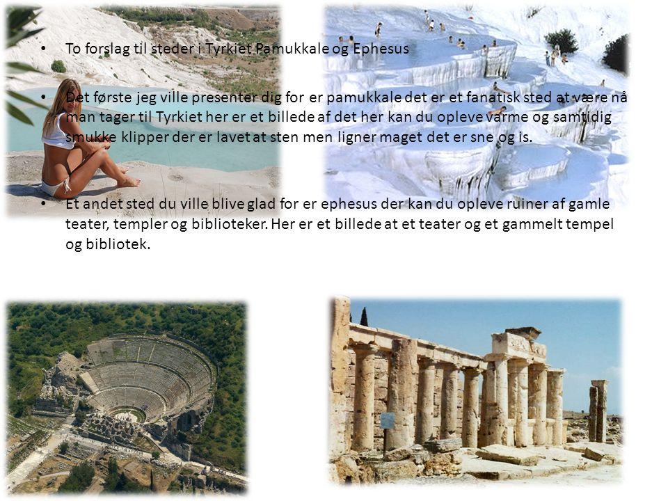 To forslag til steder i Tyrkiet Pamukkale og Ephesus