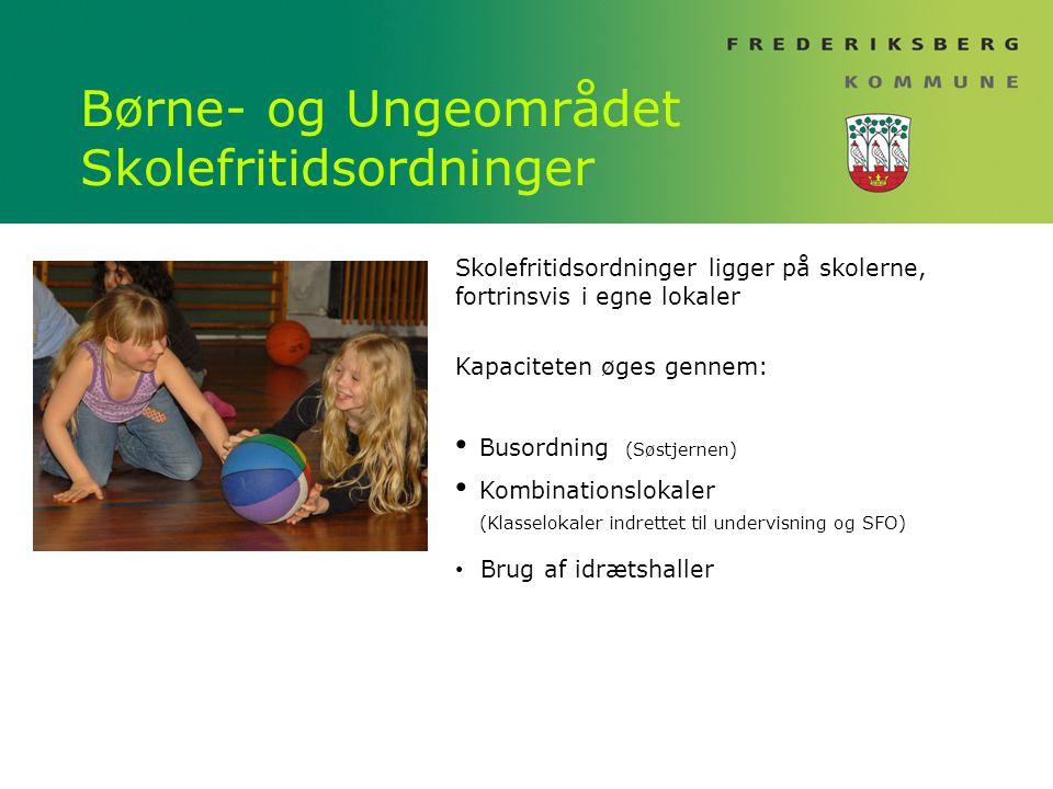 Børne- og Ungeområdet Skolefritidsordninger