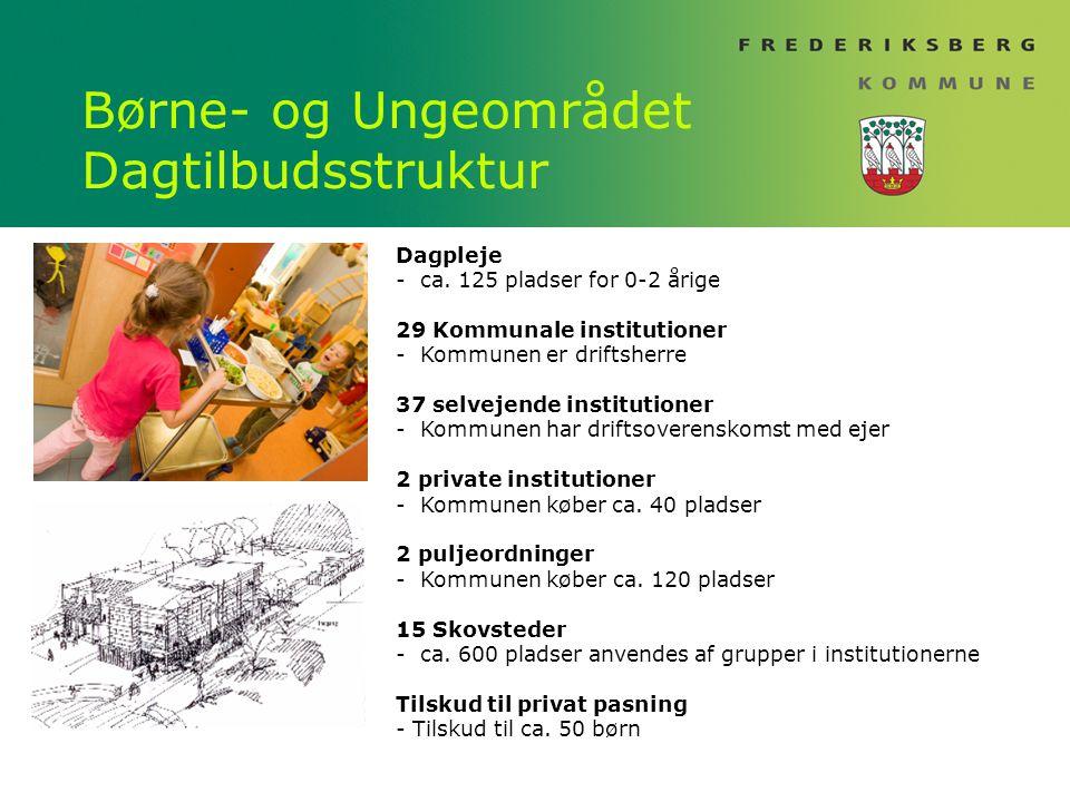 Børne- og Ungeområdet Dagtilbudsstruktur
