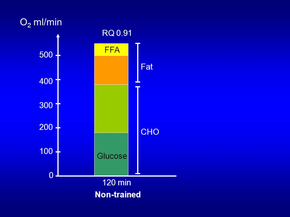 O2 ml/min RQ 0.91 FFA 500 Fat 400 300 200 CHO 100 Glucose 120 min
