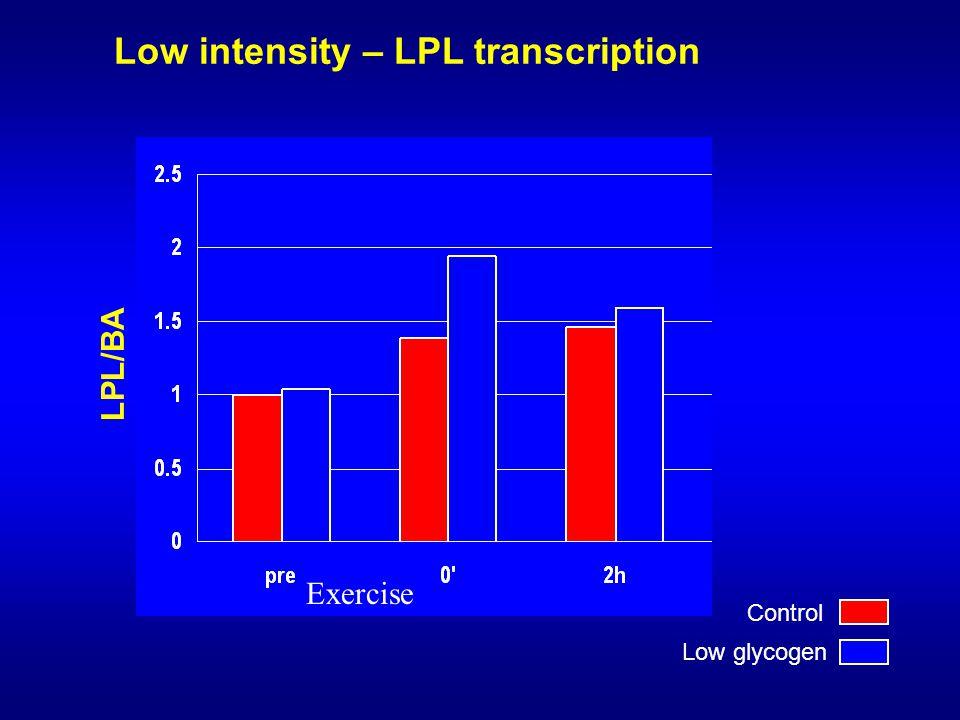 Low intensity – LPL transcription