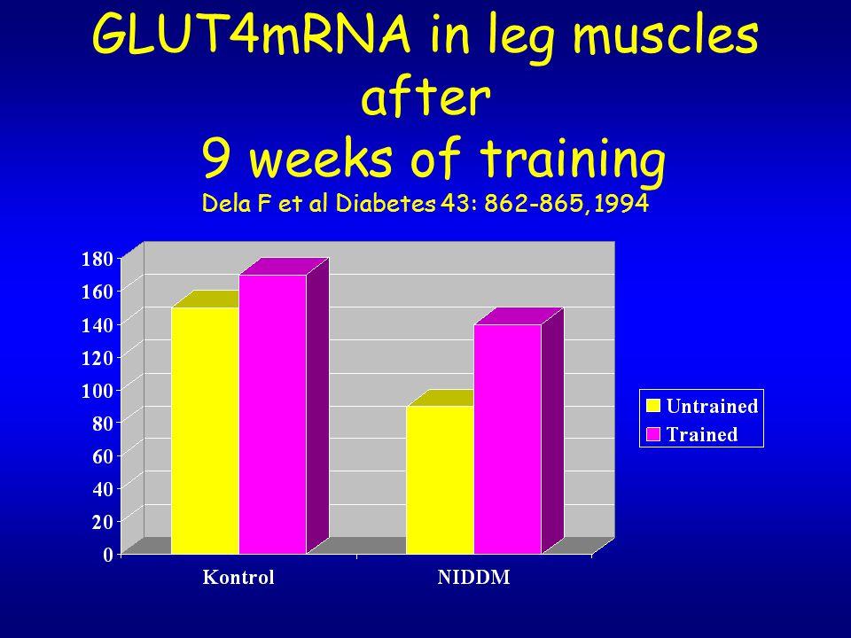 GLUT4mRNA in leg muscles after 9 weeks of training Dela F et al Diabetes 43: 862-865, 1994