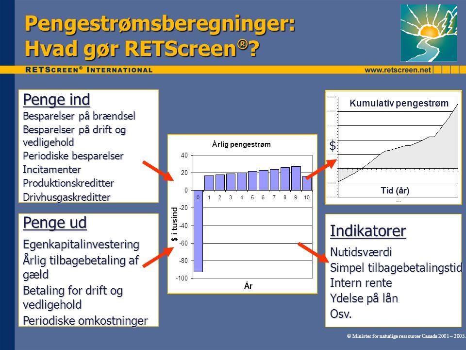 Pengestrømsberegninger: Hvad gør RETScreen®