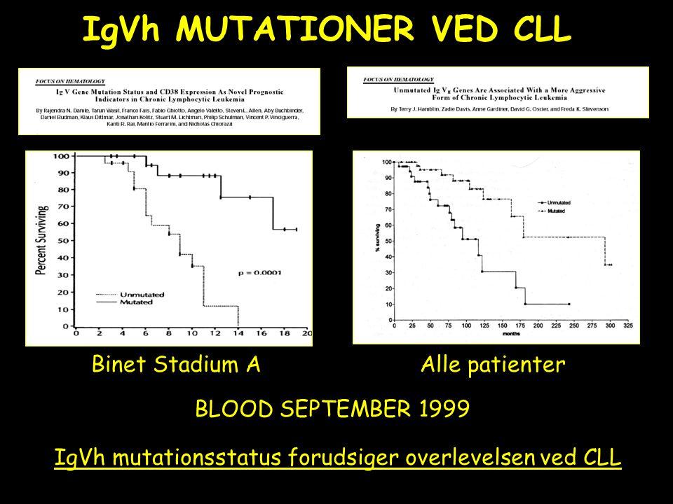IgVh MUTATIONER VED CLL
