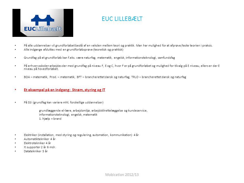 EUC LILLEBÆLT Et eksempel på en indgang: Strøm, styring og IT