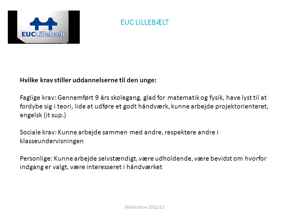 EUC LILLEBÆLT Hvilke krav stiller uddannelserne til den unge: