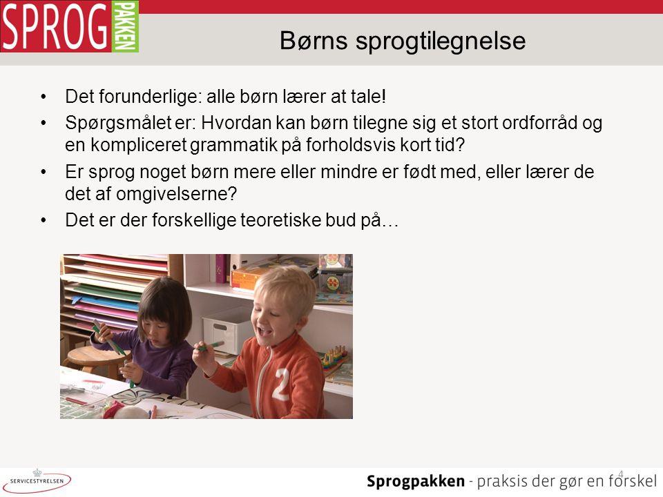 Børns sprogtilegnelse
