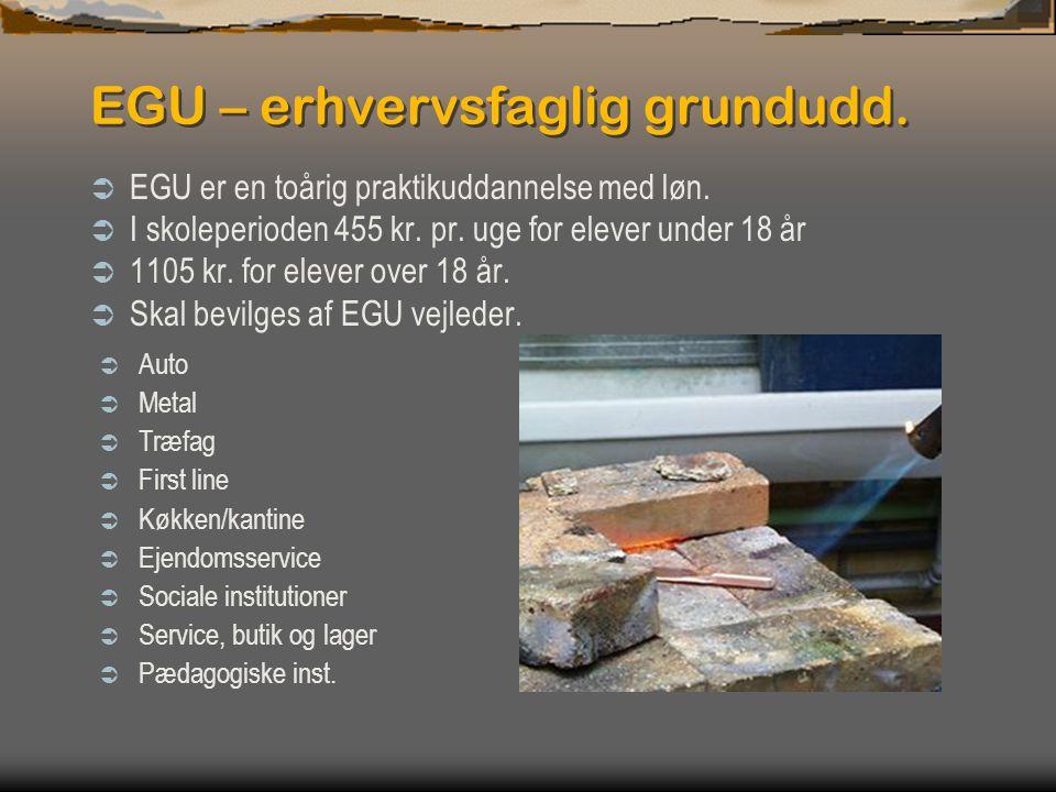 EGU – erhvervsfaglig grundudd.