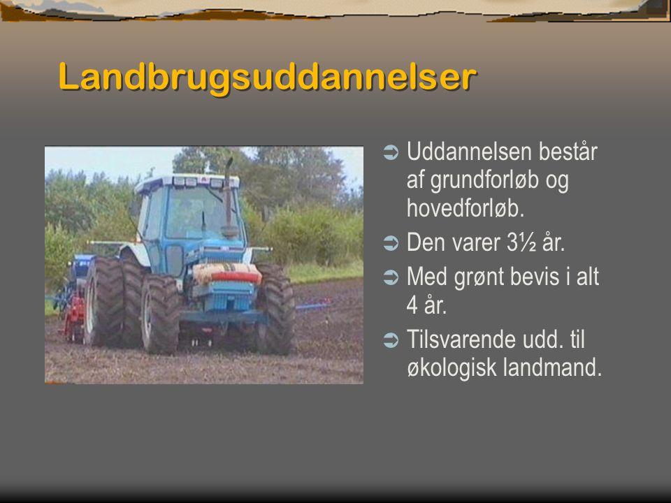 Landbrugsuddannelser