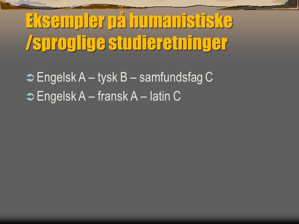Eksempler på humanistiske /sproglige studieretninger