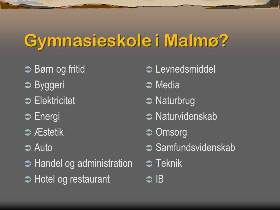 Gymnasieskole i Malmø Børn og fritid Byggeri Elektricitet Energi