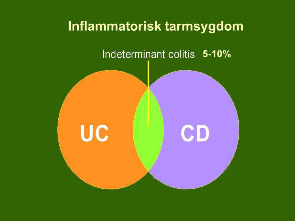 Inflammatorisk tarmsygdom