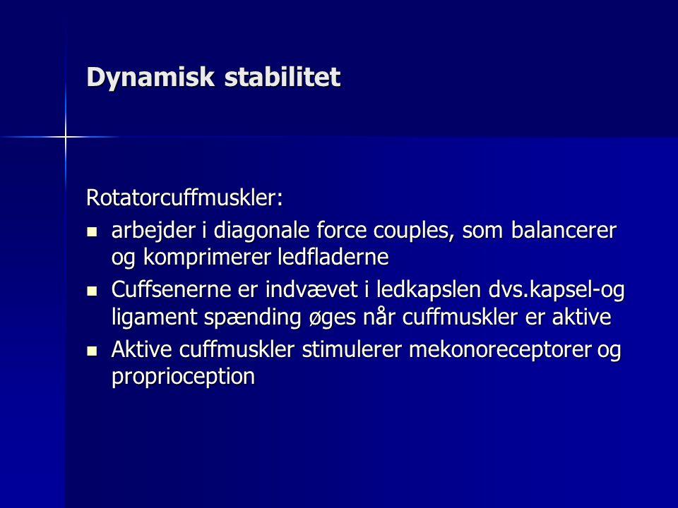 Dynamisk stabilitet Rotatorcuffmuskler: