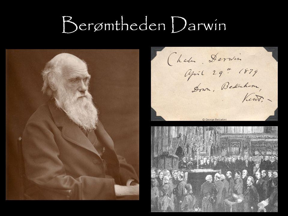 Berømtheden Darwin