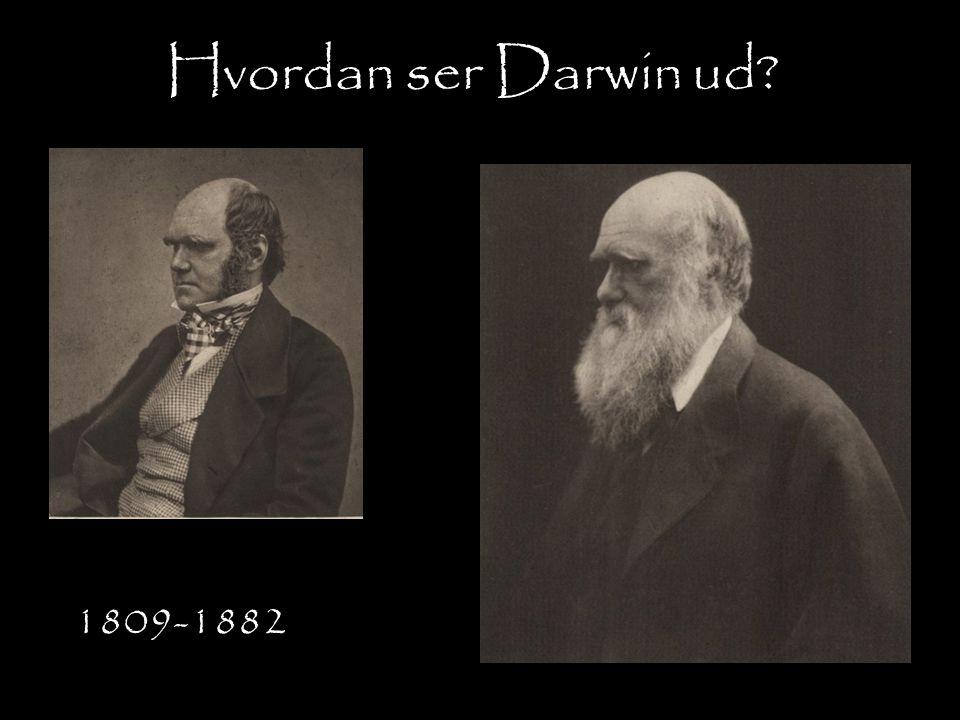 Hvordan ser Darwin ud 1809-1882