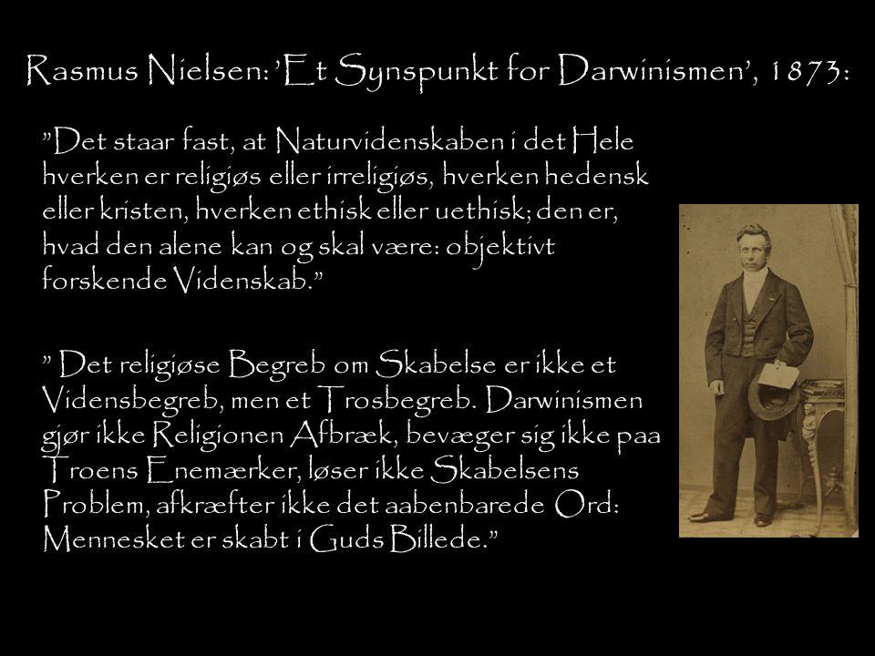 Rasmus Nielsen: 'Et Synspunkt for Darwinismen', 1873: