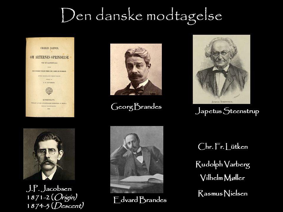 Den danske modtagelse Georg Brandes Japetus Steenstrup Chr. Fr. Lütken