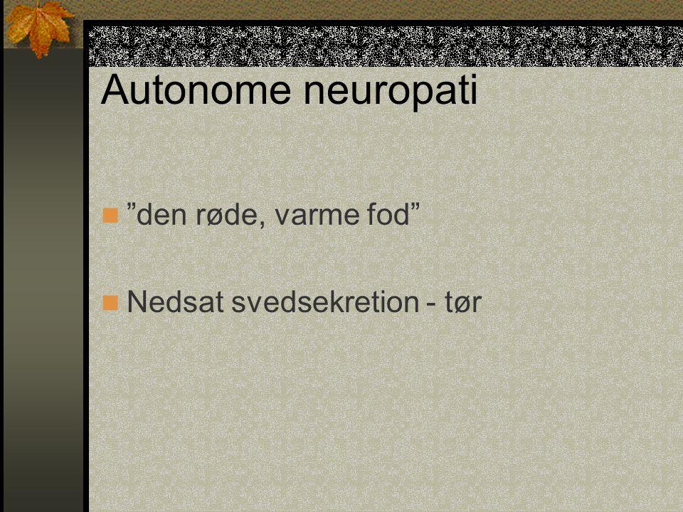 Autonome neuropati den røde, varme fod Nedsat svedsekretion - tør