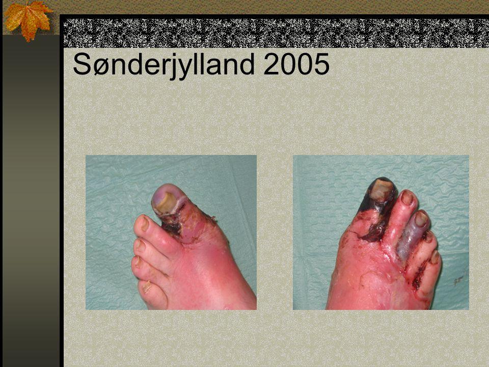 Sønderjylland 2005