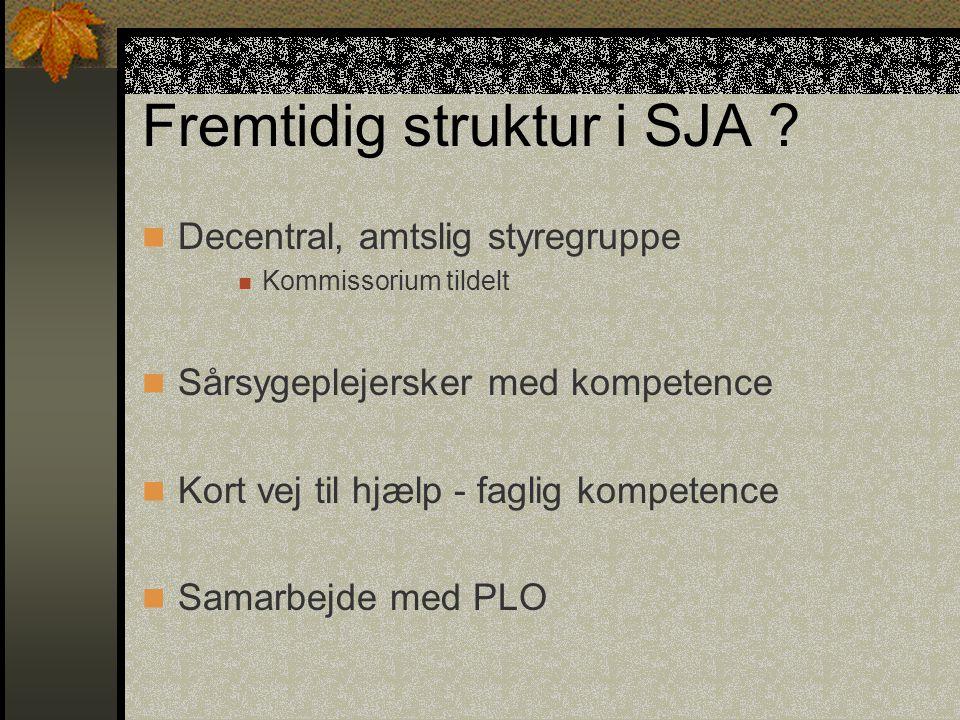 Fremtidig struktur i SJA