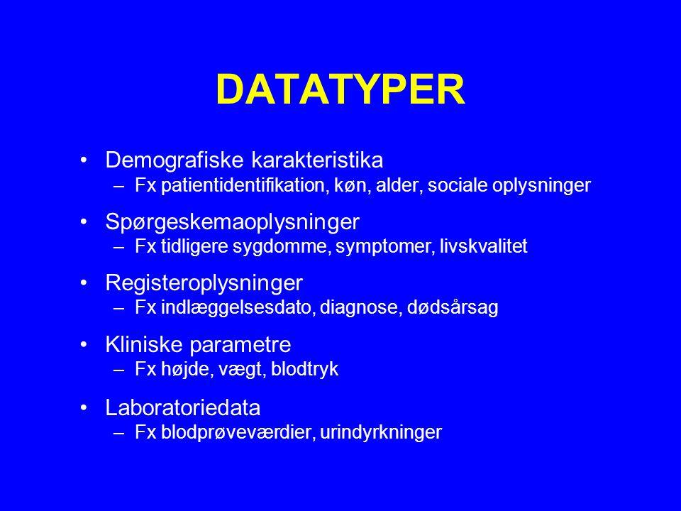 DATATYPER Demografiske karakteristika Spørgeskemaoplysninger
