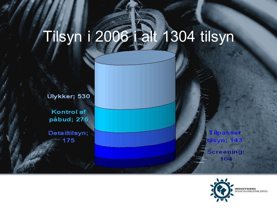 Tilsyn i 2006 i alt 1304 tilsyn