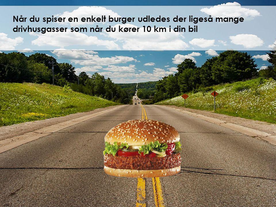 Når du spiser en enkelt burger udledes der ligeså mange drivhusgasser som når du kører 10 km i din bil