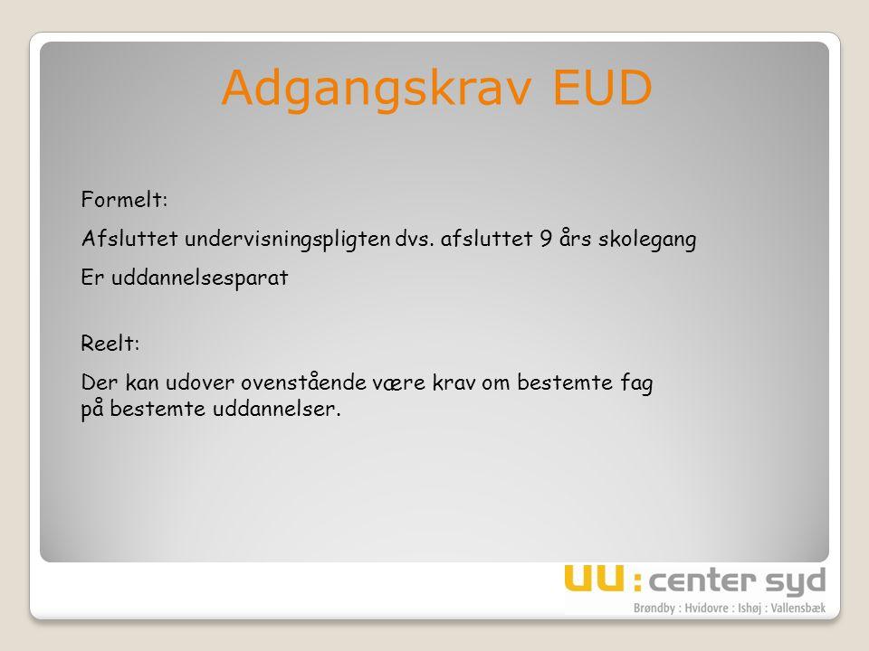 Adgangskrav EUD Formelt: