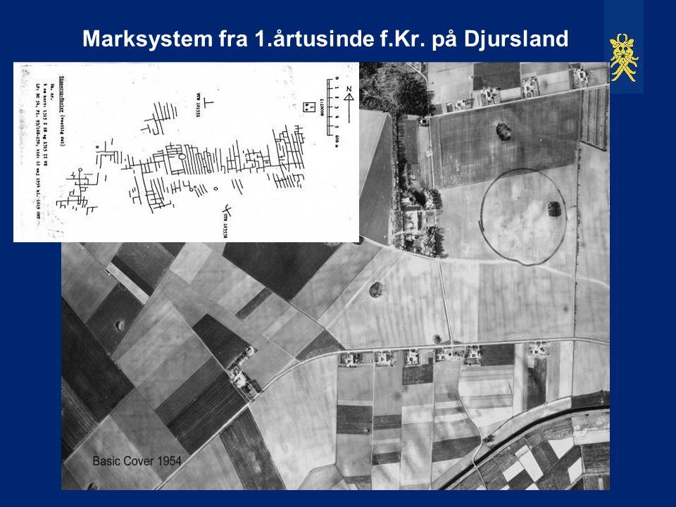 Marksystem fra 1.årtusinde f.Kr. på Djursland