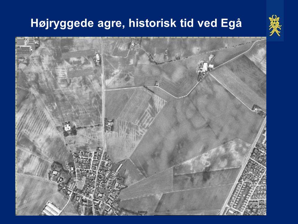 Højryggede agre, historisk tid ved Egå