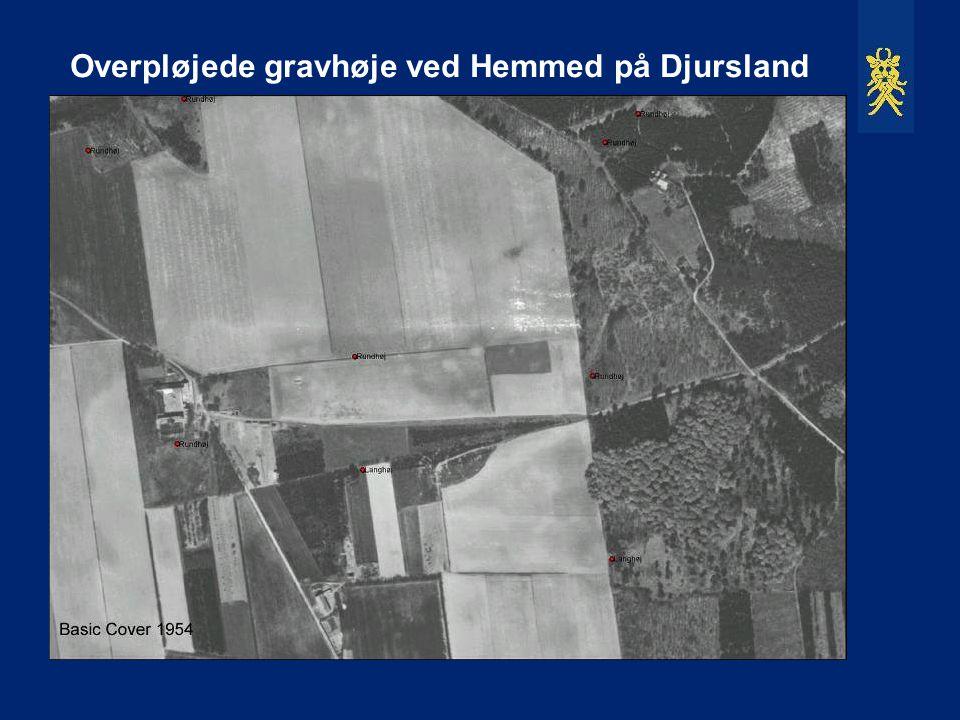 Overpløjede gravhøje ved Hemmed på Djursland