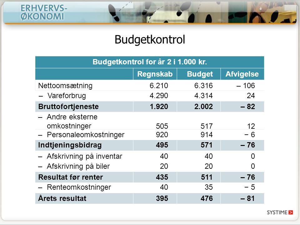 Budgetkontrol for år 2 i 1.000 kr.