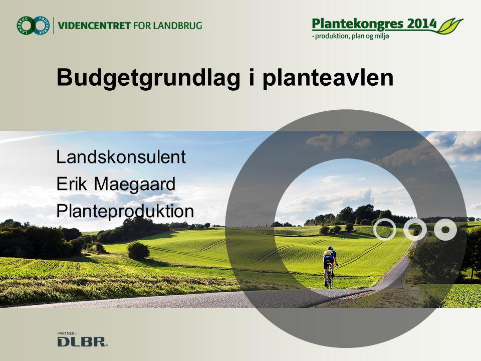 Budgetgrundlag i planteavlen