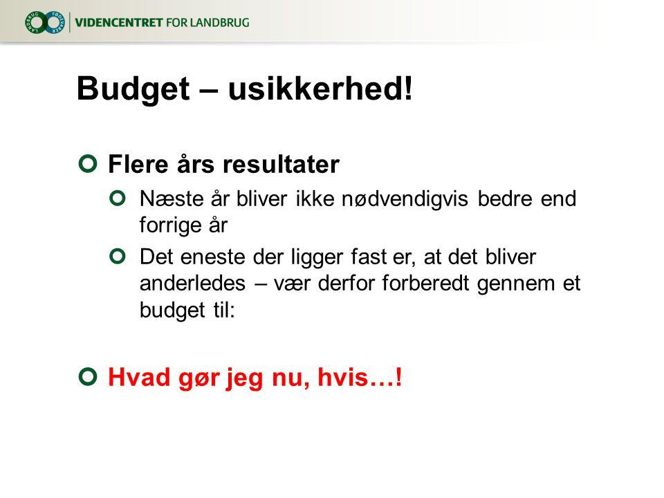 Budget – usikkerhed! Flere års resultater Hvad gør jeg nu, hvis…!