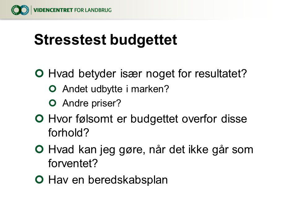 Stresstest budgettet Hvad betyder især noget for resultatet