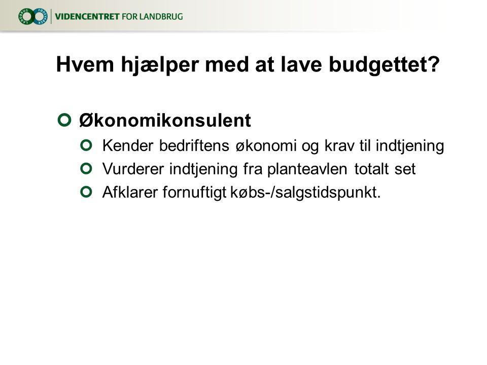 Hvem hjælper med at lave budgettet
