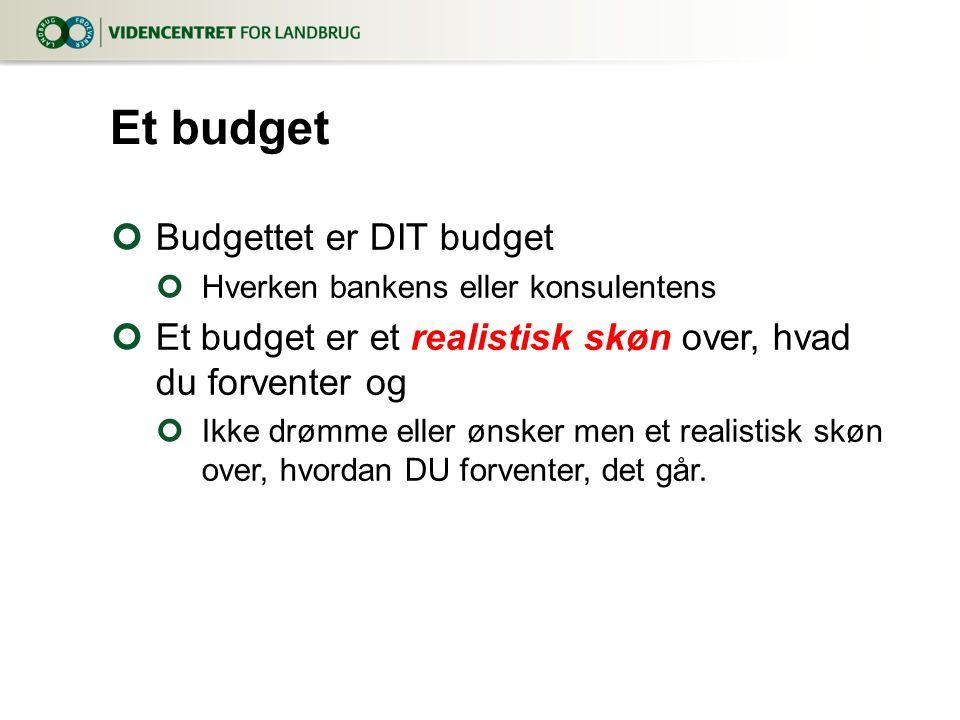 Et budget Budgettet er DIT budget