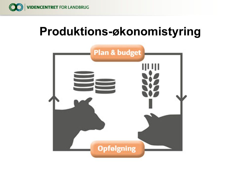 Produktions-økonomistyring