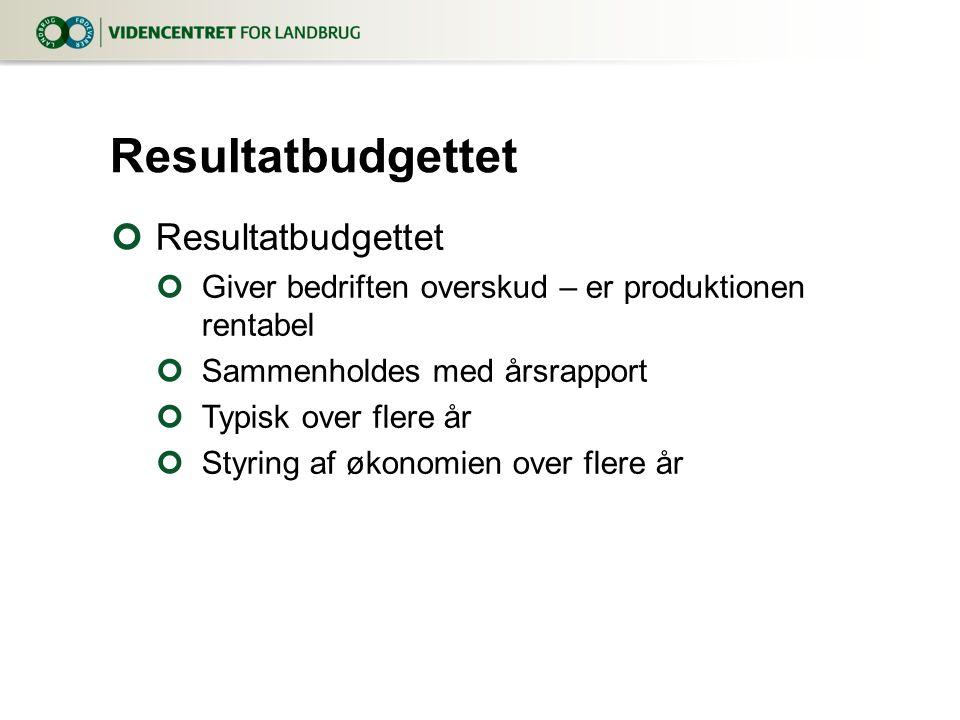 Resultatbudgettet Resultatbudgettet
