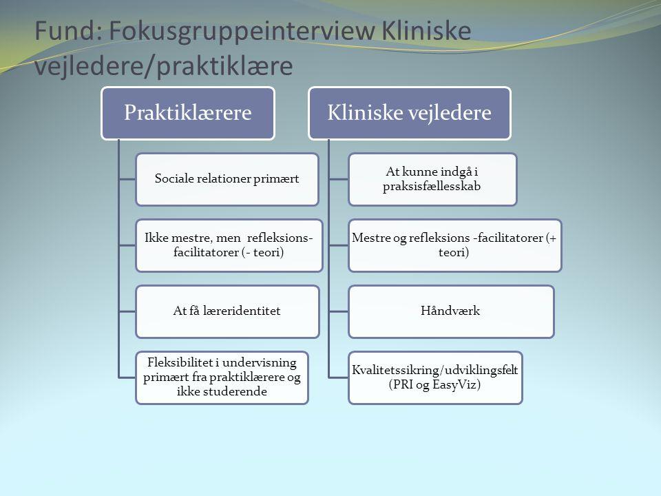 Fund: Fokusgruppeinterview Kliniske vejledere/praktiklære