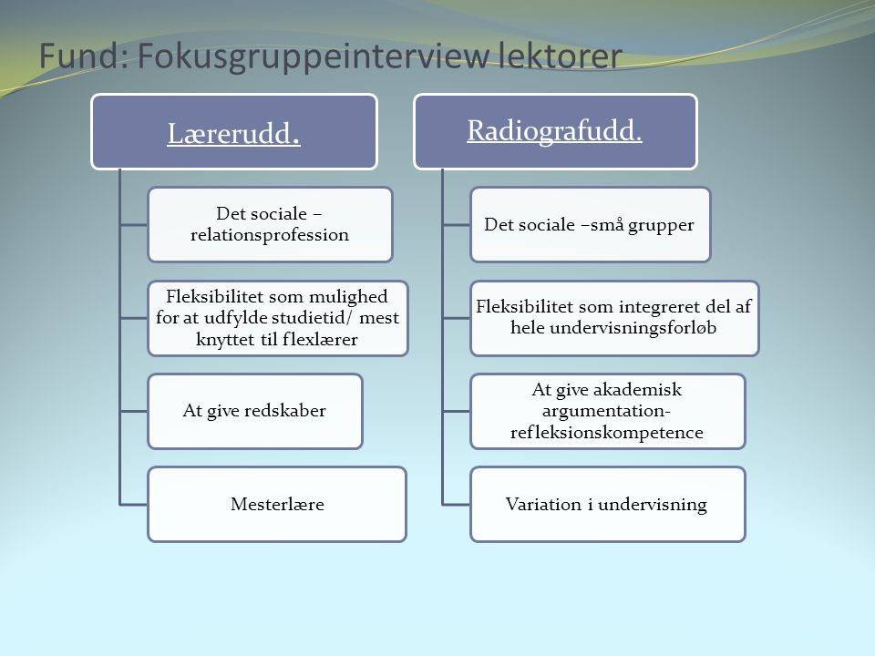 Fund: Fokusgruppeinterview lektorer