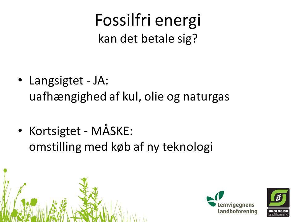 Fossilfri energi kan det betale sig