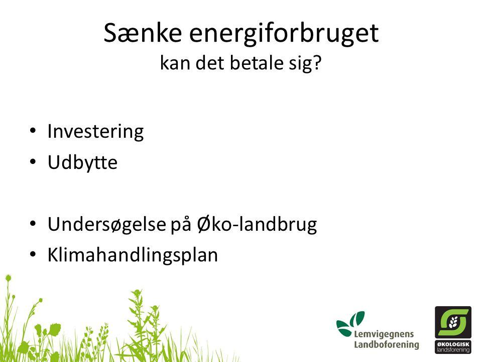 Sænke energiforbruget kan det betale sig