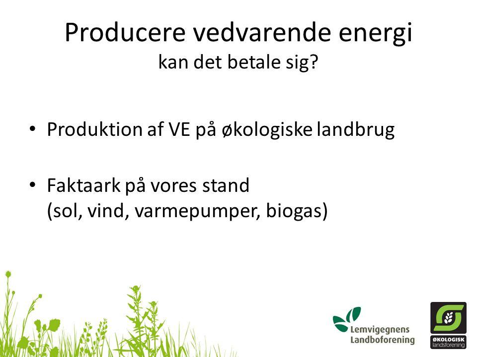 Producere vedvarende energi kan det betale sig