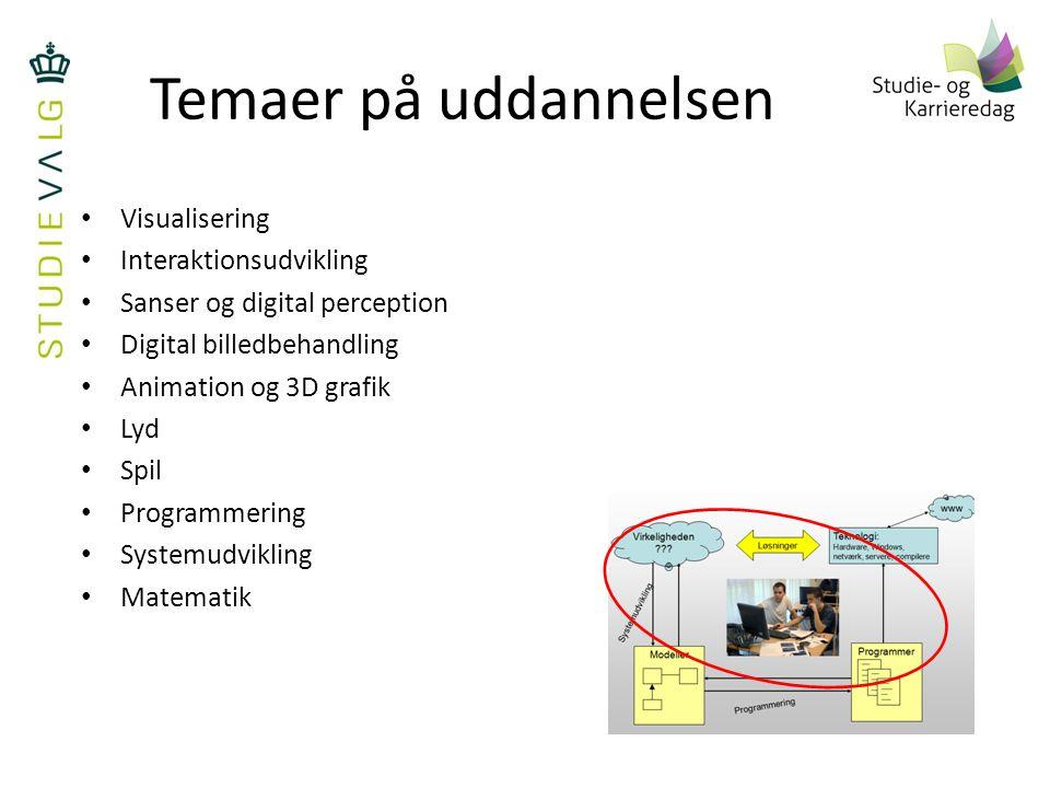 Temaer på uddannelsen Visualisering Interaktionsudvikling