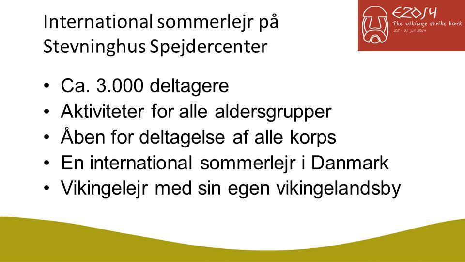International sommerlejr på Stevninghus Spejdercenter