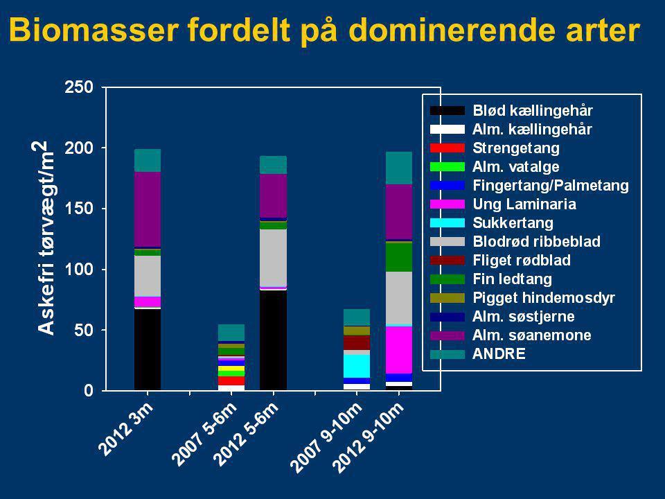 Biomasser fordelt på dominerende arter