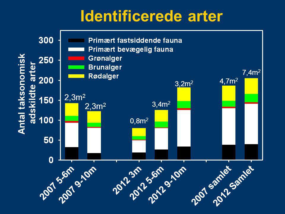 Identificerede arter 2,3m2 0,8m2 3,4m2 3,2m2 4,7m2 7,4m2